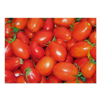 Plum Tomatoes Poster