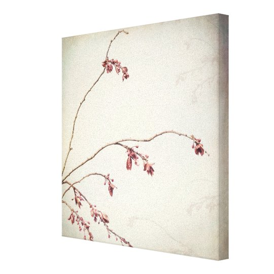 Plum Tree Branch with Spring Buds | Seabeck, WA Canvas Print