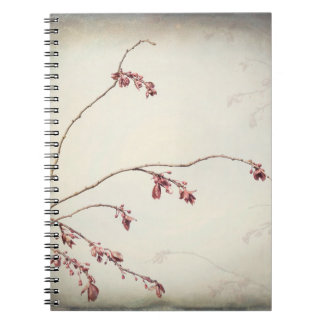 Plum Tree Branch with Spring Buds | Seabeck, WA Notebooks