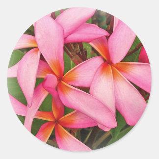 Plumeria - Ace Neon Pink Sticker