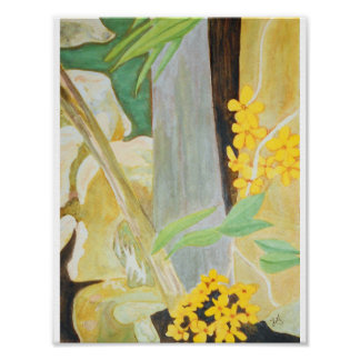 Plumeria Blooms in the Creekbed Watercolor Poster