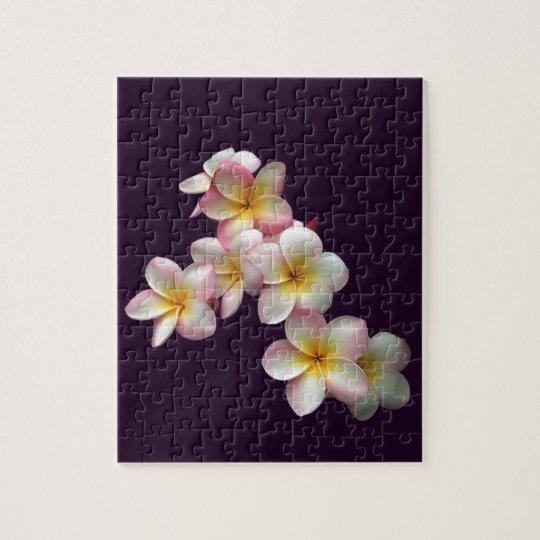 Plumeria blossoms on dark purple jigsaw puzzle