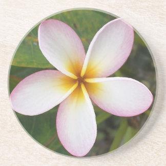 Plumeria Coaster