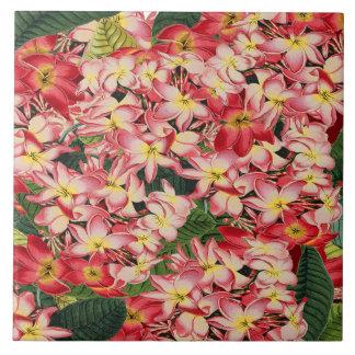 Plumeria Floral Garden Tropical Flower Tile
