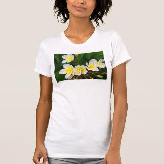 Plumeria flowers close-up, Hawaii T-Shirt