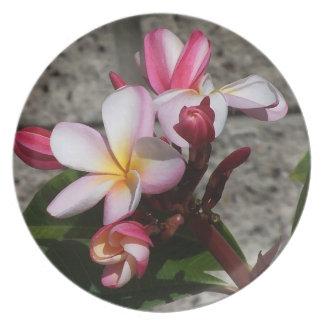 Plumeria Flowers Plate