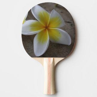 Plumeria - Frangipani Floral Photograph Ping Pong Paddle