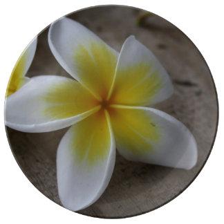 Plumeria - Frangipani Floral Photograph Plate