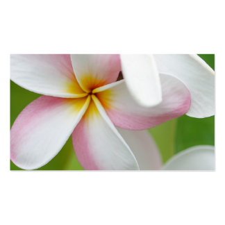 Plumeria Frangipani Hawaii Flower Customized Blank Business Card