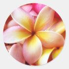 Plumeria Frangipani Hawaii Flower Customized Blank Classic Round Sticker