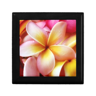 Plumeria Frangipani Hawaii Flower Customized Blank Gift Box