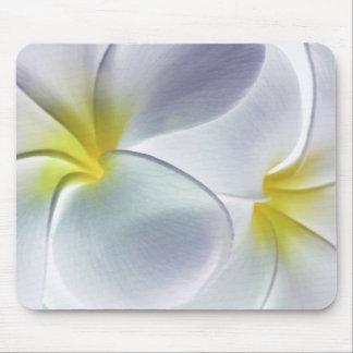 Plumeria Frangipani Hawaii Flower Customized Blank Mouse Pad