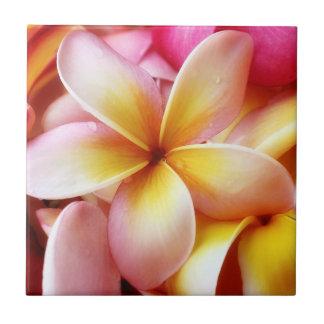 Plumeria Frangipani Hawaii Flower Customized Blank Tile