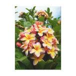 Plumeria hawaïen toile tendue