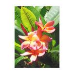 Plumeria hawaïen toiles tendues sur châssis