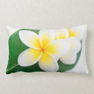 plumeria lumbar pillow