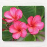Plumeria - Miami Rose on mousepad