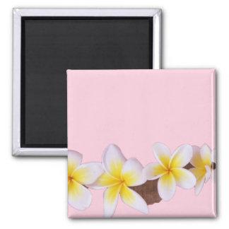 Plumeria on Pretty Pink Magnet