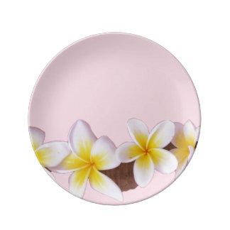 Plumeria on Pretty Pink Porcelain Plates
