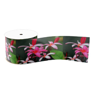 Plumeria Ribbon Grosgrain Ribbon