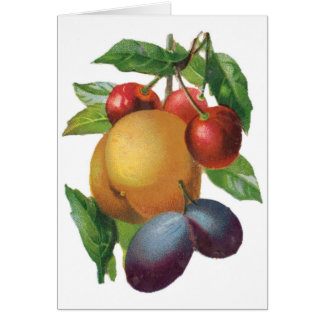 Plums, Cherries, Peach Customizable Notecard