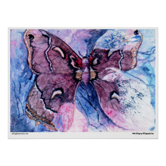 PMACarlson Cecropia Moth Collage Poster