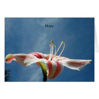PMACarlson Hope Card