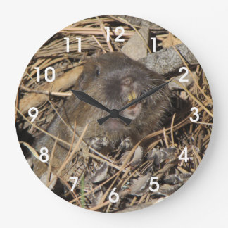 Pocket Gopher Clocks