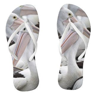 Pod of Pelicans Flip Flops