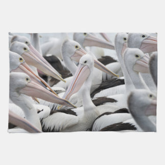 Pod of Pelicans Kitchen Towel