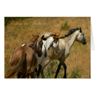 Poetry in Motion ~ Wild Mares Card