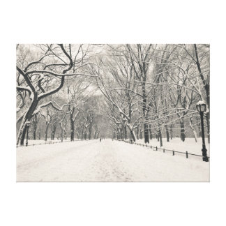 Poet's Walk - Central Park - New York City Canvas Print
