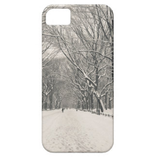 Poet's Walk - Central Park Winter Case For The iPhone 5