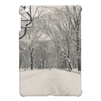 Poet's Walk - Central Park Winter iPad Mini Case