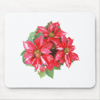 Poinsettia Christmas Star transparent PNG Mouse Pad