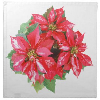 Poinsettia Christmas Star transparent PNG Napkin