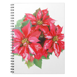 Poinsettia Christmas Star transparent PNG Spiral Notebook