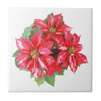 Poinsettia Christmas Star transparent PNG Tile