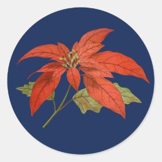 Poinsettia, dark blue background - Merry Christmas Classic Round Sticker