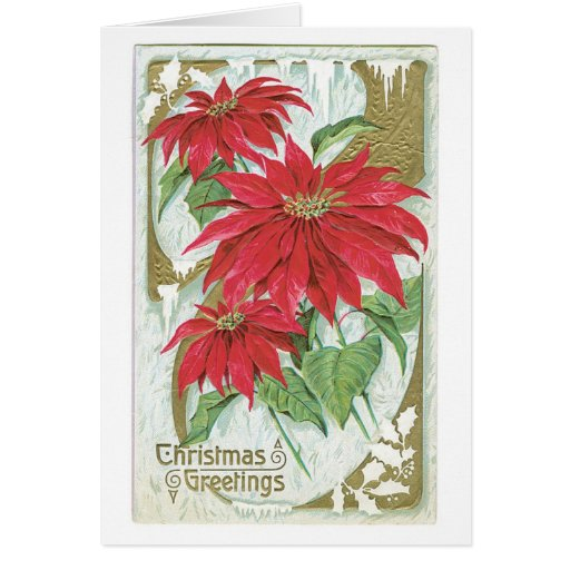 Poinsettia démodée de Noël Cartes De Vœux