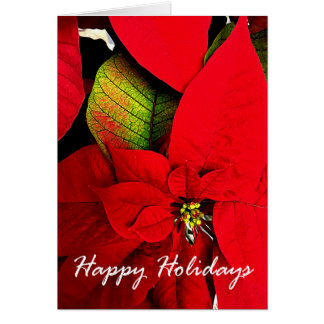 Poinsettia Holiday Greetings Card