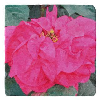 Poinsettia Marble Stone Trivet