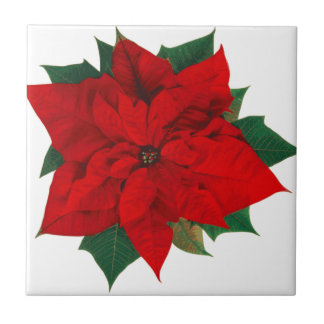 Poinsettia.png Ceramic Tiles