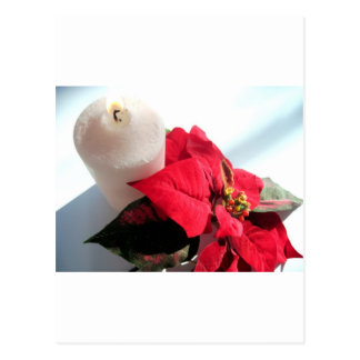 Poinsettia with Candle Postcard