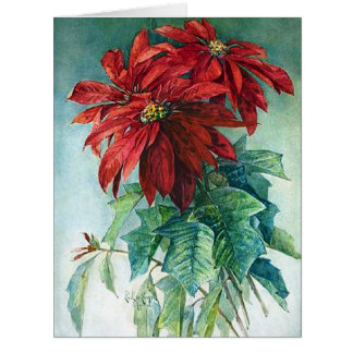 Poinsettias Flowers Large Christmas Greeting Card