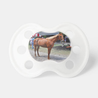 Point of Entry Colt Pacifier