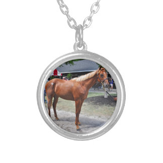 Point of Entry Colt Silver Plated Necklace