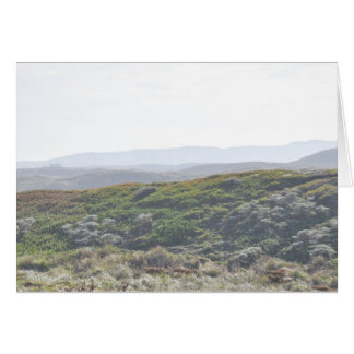 Point Reyes Hillside - Greeting Card