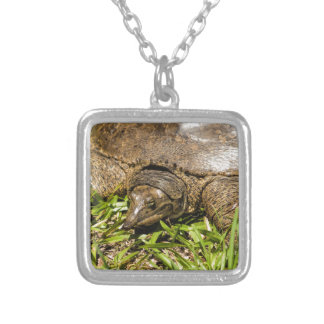 Pointed Long Nose Florida Softshell Turtle Silver Plated Necklace