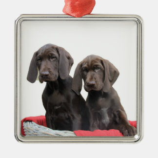 Pointer Sisters in a basket Silver-Colored Square Ornament